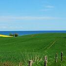 Baltic Sea Temptation by jchanders