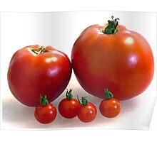 Happy Tomato Family Poster