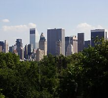 Manhattan Skyline - Central Park by JordanDefty