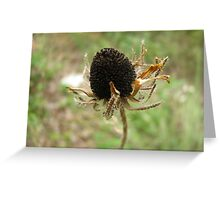 Withering Greeting Card