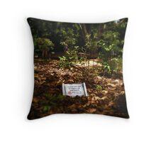Sustainability Throw Pillow