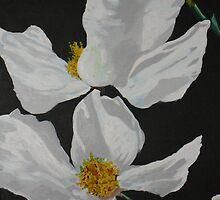 White Flowers by Adam Berardi