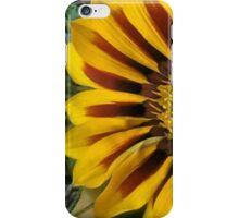 Yellow Gazania iPhone Case/Skin