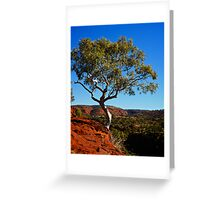 Lonely Snow Gum Greeting Card