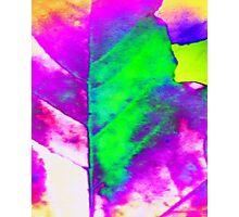 Autumn leaf colorful digitally processed Photographic Print