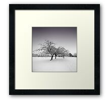 Stray Trees in Winter Framed Print
