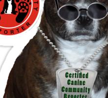 Oliver Bovello, Canine Community Reporter-Travel Sticker