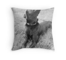 Happy Lab Throw Pillow