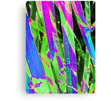 "Natur - Gräser - Nature - Grass - psychodelic"" Canvas Print"