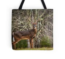 White Tailed Deer Eight Point Buck Tote Bag