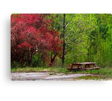 Spring Picnic Canvas Print