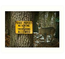 No Hunting Sign and Whitetail Buck Art Print