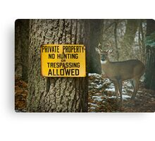 No Hunting Sign and Whitetail Buck Metal Print