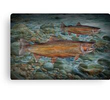 Steelhead Trout Migration in Fall Canvas Print