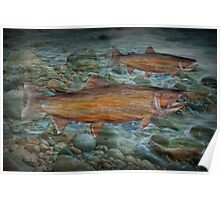 Steelhead Trout Migration in Fall Poster