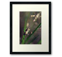 Hop Framed Print