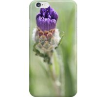 An opening bud  iPhone Case/Skin