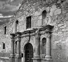 The Alamo by Alex Preiss