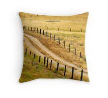 Road through the fields Throw Pillow