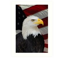 Mr. Bald Eagle Art Print