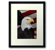 Mr. Bald Eagle Framed Print