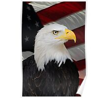 Mr. Bald Eagle Poster