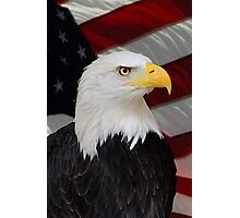 Mr. Bald Eagle Photographic Print