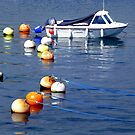 Lots of Buoys by mikebov