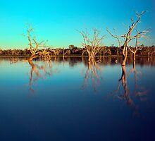 Dawn Races - Lake Pinaroo NSW by Malcolm Katon