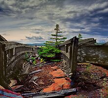 Shipwreck at Neys Provincial Park No.23 by Randall Nyhof