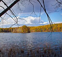 Hall Lake in Autumn by Randall Nyhof