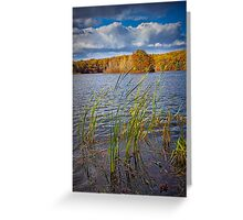 Hall Lake in Autumn No 0086 Greeting Card