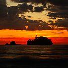 eaglehawk neck sunrise. tasmania, australia by tim buckley | bodhiimages