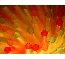 Straw Materials Photographic Print