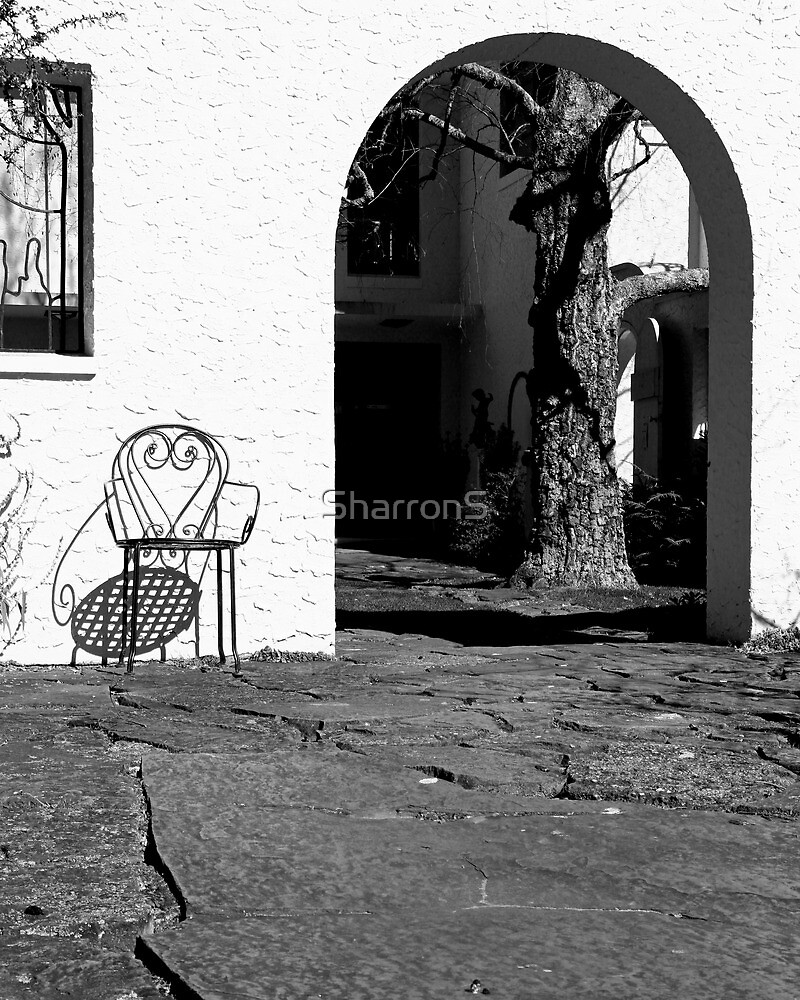 warm afternoon spot by SharronS