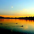 Staffelsee Sunset by ©The Creative  Minds