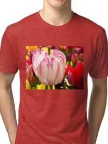 Stripes and Colors Tri-blend T-Shirt