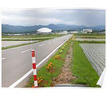 Road in Japan Poster