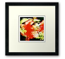 Rhododendron I. (square) Framed Print