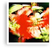 Rhododendron I. (square) Canvas Print