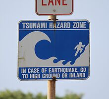 Tsunami Hazard Zone by Molly Quinn