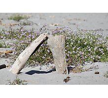 Wooden Sand Art Photographic Print