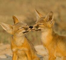 Nose To Nose by Kent Keller