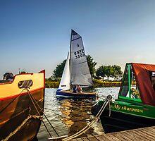 Summer Sailing by mhfore