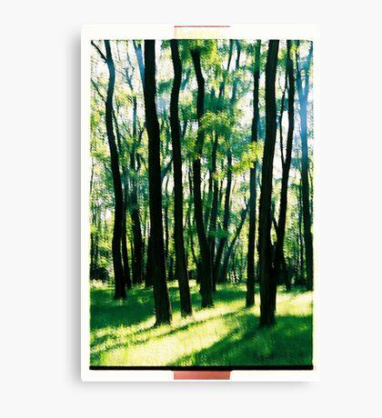 Happy Trees Canvas Print