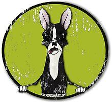 Boston Terrier Retro Pop Out by OvergrownAsylum