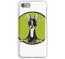 Boston Terrier Retro Pop Out iPhone Case/Skin