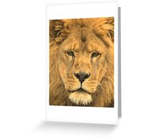 727 king of l Greeting Card
