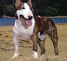 Bull Terrier Dog Portrait by Oldetimemercan