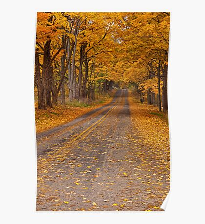 Fall Rural Country Road Poster